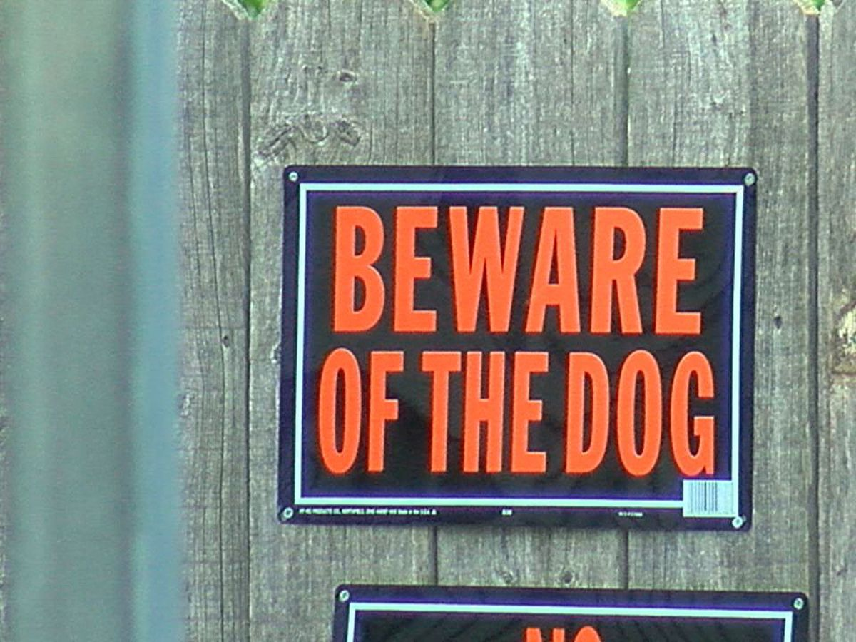 Altus residents detail multiple dog attacks