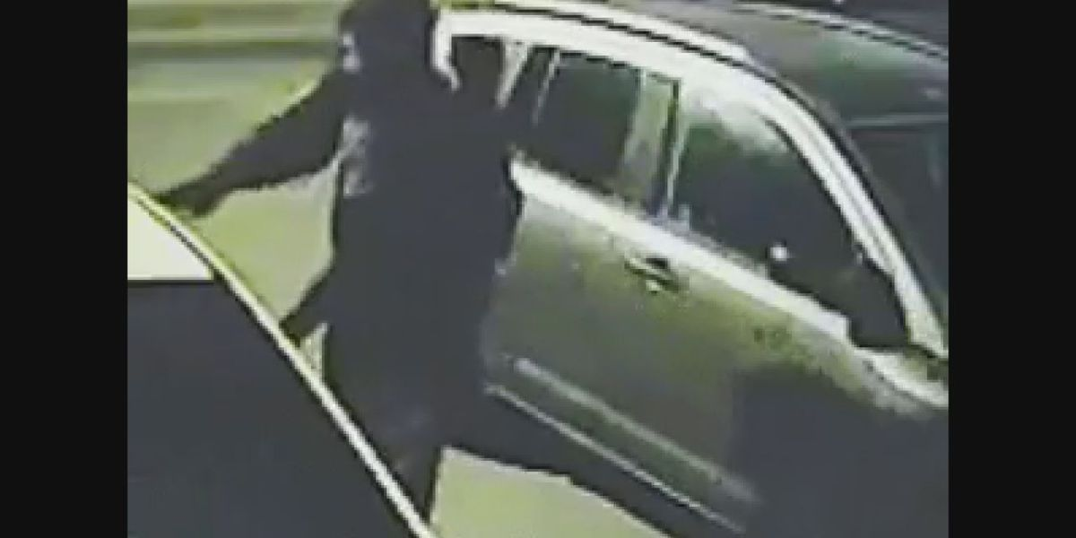 Surveillance catches real-life Grinch burglarizing vehicles in Cache neighborhood on Christmas