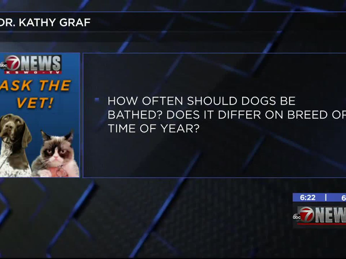 Ask the Vet: Dr. Kathy Graf