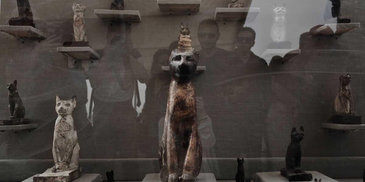 Egypt's newly discovered tombs hold mummies, animal statues