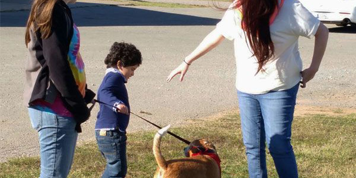 Elgin animal shelter holds first public adoption event