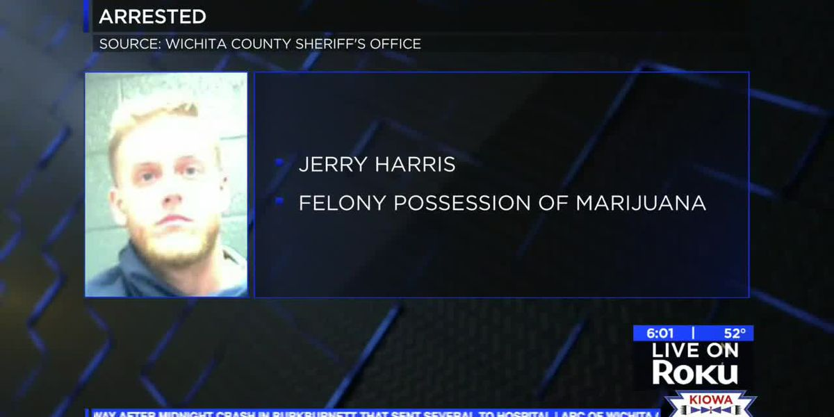 Deputies discover 83 pounds of marijuana in traffic stop