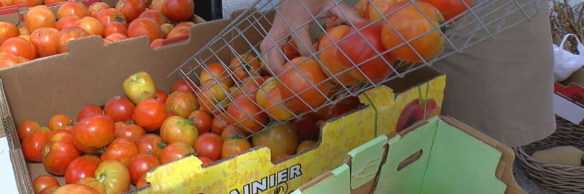 Lawton Farmer's Market hosts 8th Annual Tomato Festival
